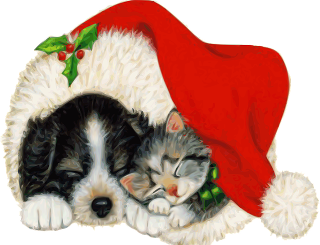 There Will Be No Adoption Hours on December 24th and 31st