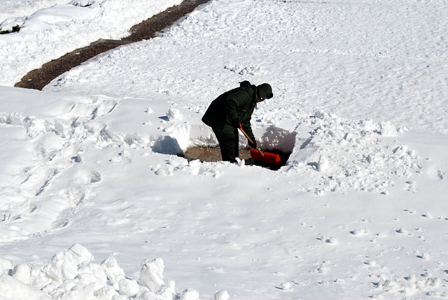 Tired of shoveling? Let Beggars Pizza cook for you AND help HHAS!